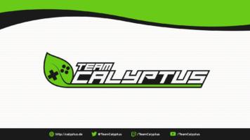 (c) Calyptus.de